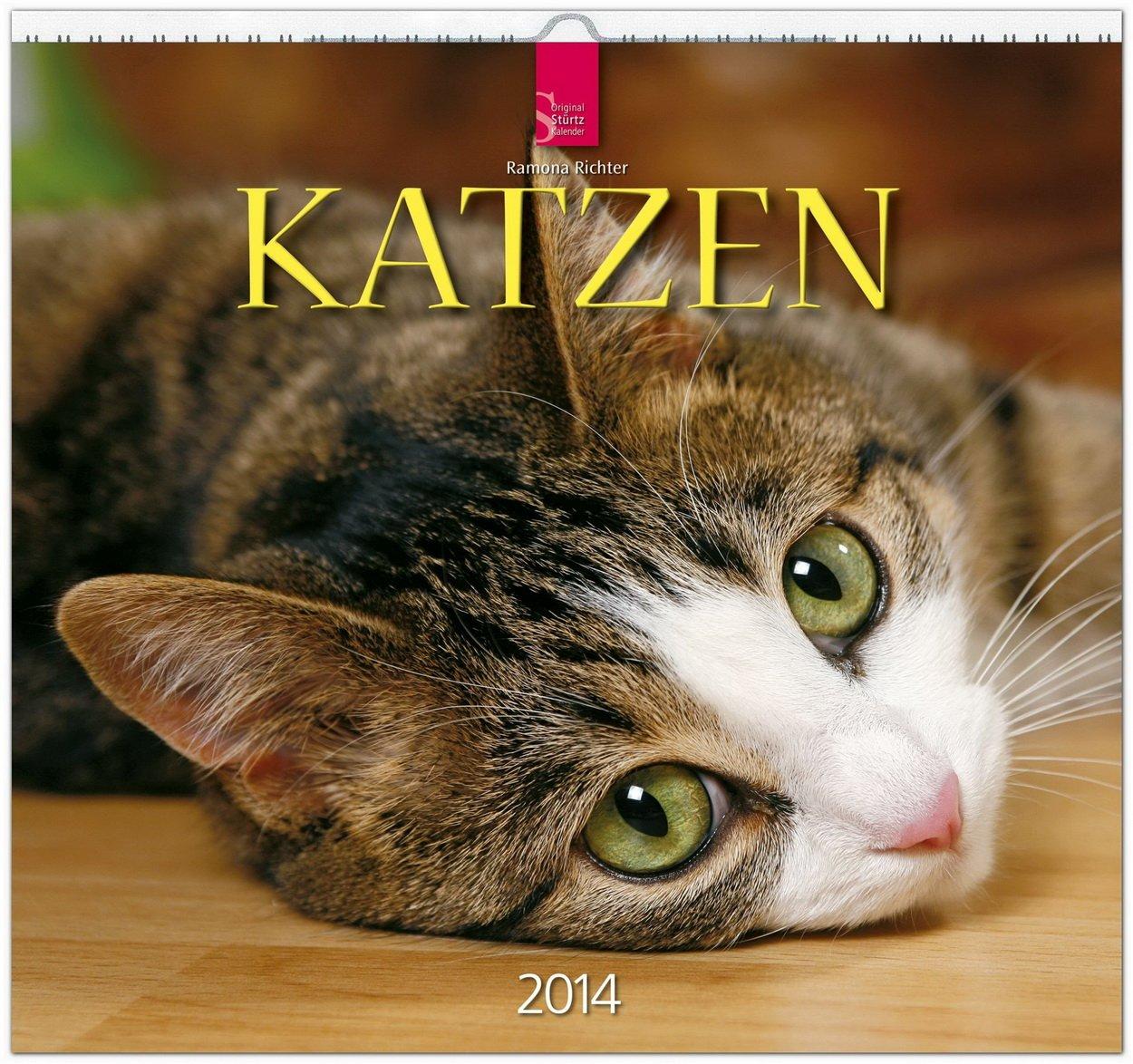 Katzen 2014: Original Stürtz-Kalender - Mittelformat-Kalender 33 x 31 cm [Spiralbindung]