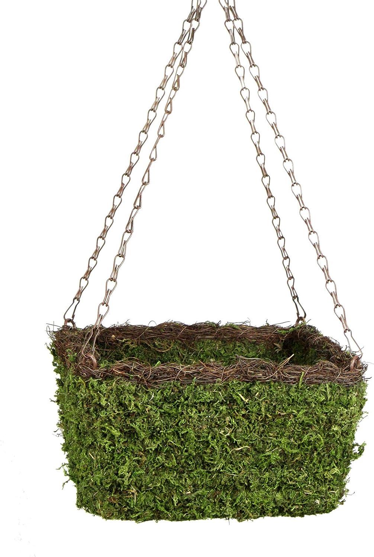 SuperMoss 29212 MossWeave Hanging Basket – Square, Fresh Green with Wicker Rim, Small 10.5 Diameter
