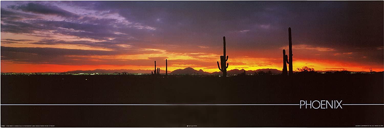 Phoenix Sunset with Cactus Poster Arizona Desert Landscape Wall Decor Art Print (12x36)