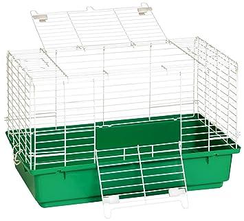 Miller Manufacturing Jaula para conejo con base de plástico, bandeja, comederos y bebedero,