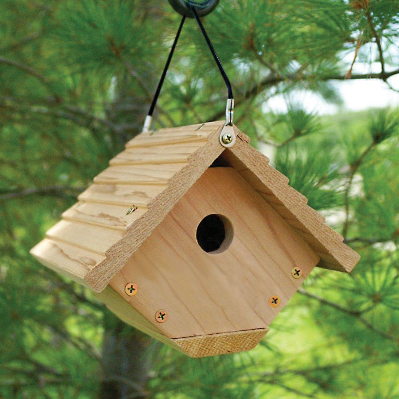 Attractive Amazon.com : Audubon Traditional Wren House Model NAWREN : Birdhouse :  Garden U0026 Outdoor