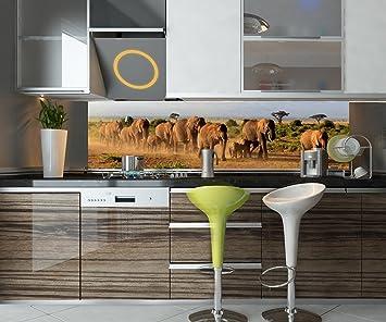 wandmotiv24 Cocina pared trasera Manada de elefantes en Kilimanjaro Design M0522 240 x 60 cm (W ...