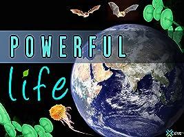 Powerful Life: Season 1