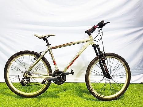 Regina Reina Bicicleta Bicicleta MTB 26 Spark 21 V Cambio Stef 40 ...