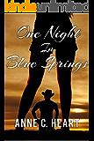 One Night in Blue Springs