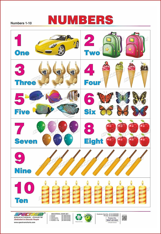 Worksheet number charts grass fedjp worksheet study site worksheet number charts set of 5 educational wall charts english alphabets numbers shapes transport 1 2 nvjuhfo Images