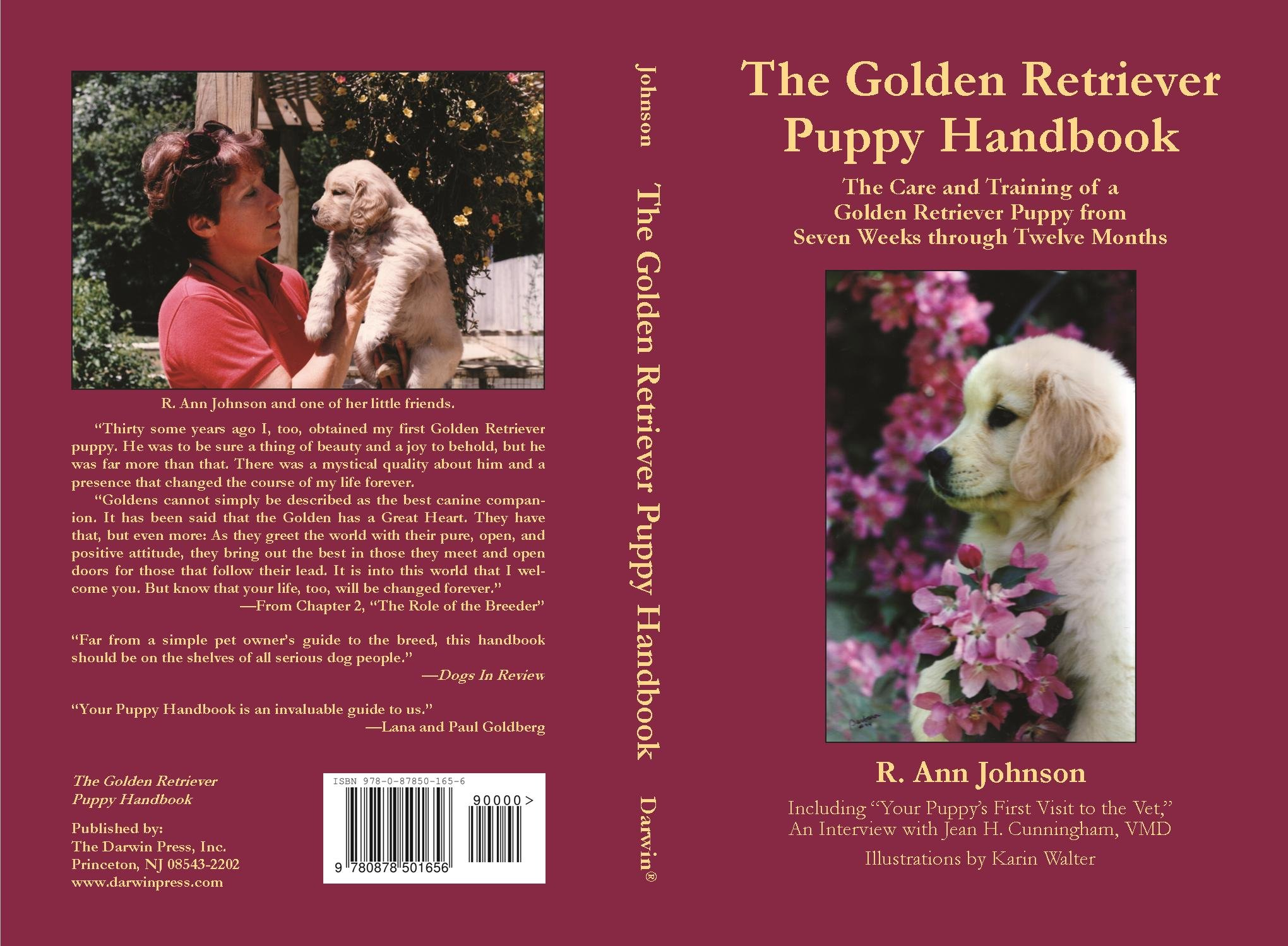 The Golden Retriever Puppy Handbook