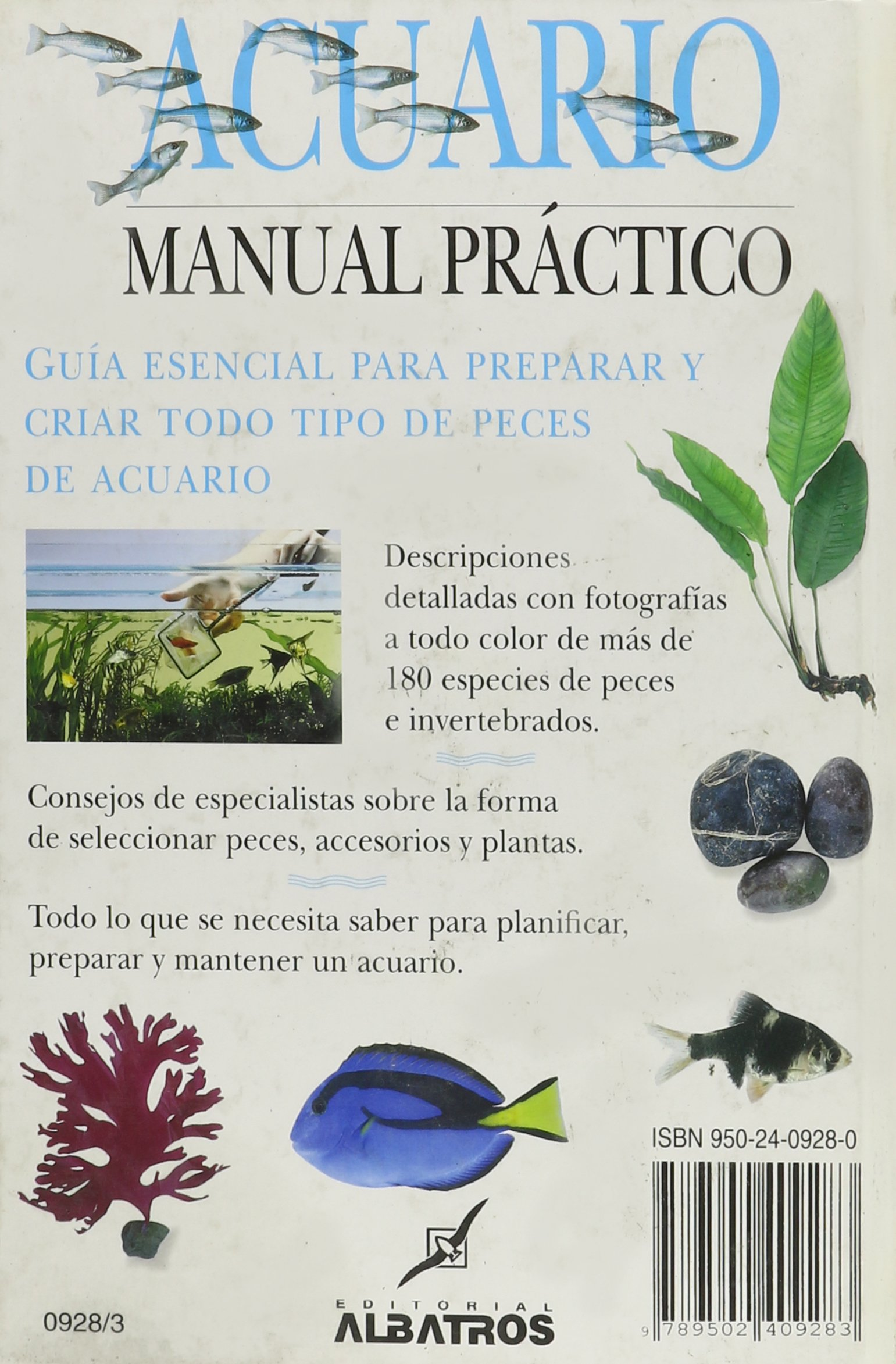 Acuario/ Aquarium: Manual Practico/ an Owners Manual (Spanish Edition): Gina Sanford: 9789502409283: Amazon.com: Books