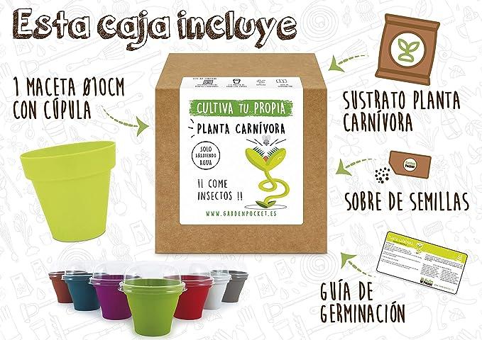 Garden Pocket - Kit Cultivo Planta CARNÍVORA Venus: Amazon.es: Jardín
