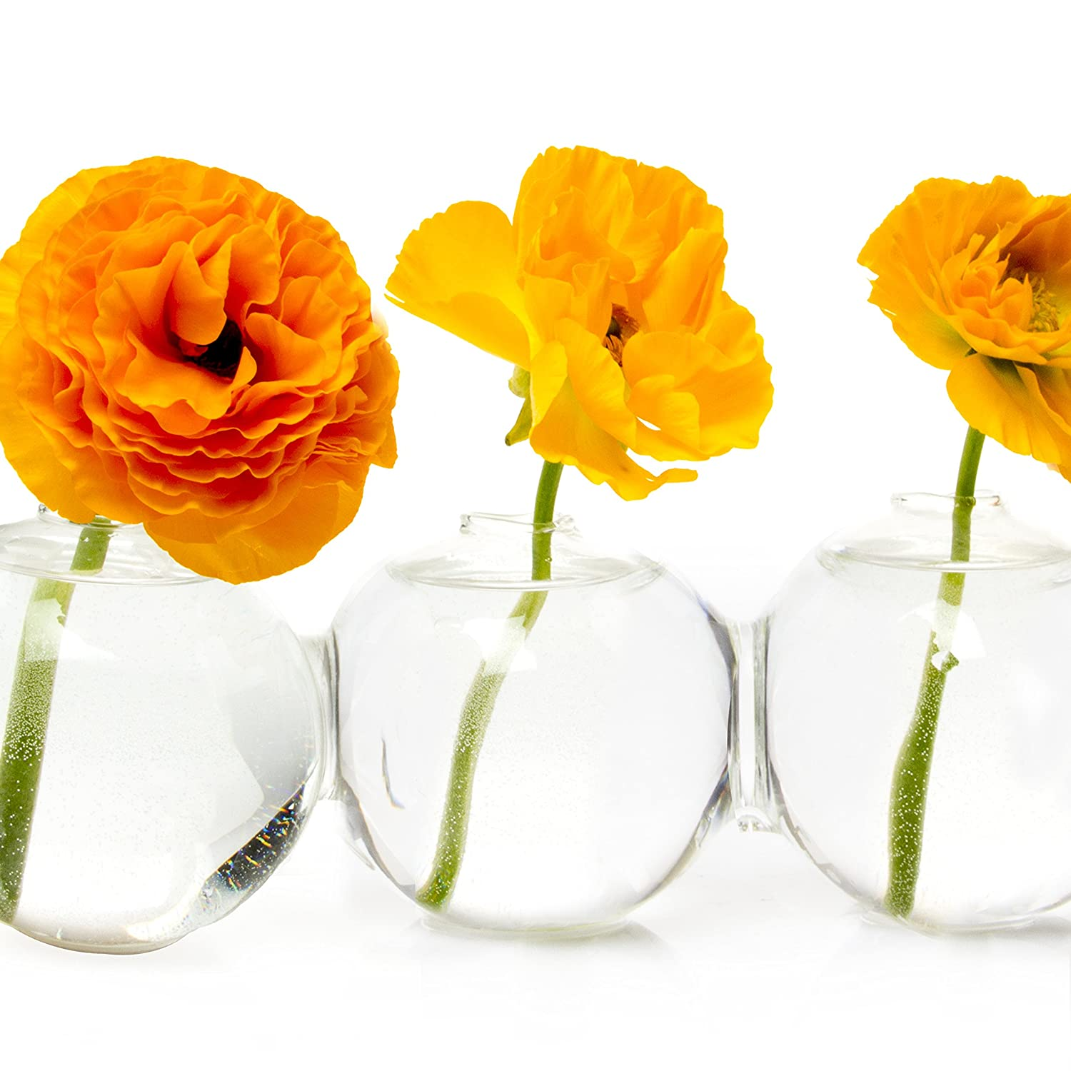 Amazon chive big caterpillar large clear glass bud vase amazon chive big caterpillar large clear glass bud vase for short flowers low sitting unique shape set of 4 glass round connected balls home reviewsmspy