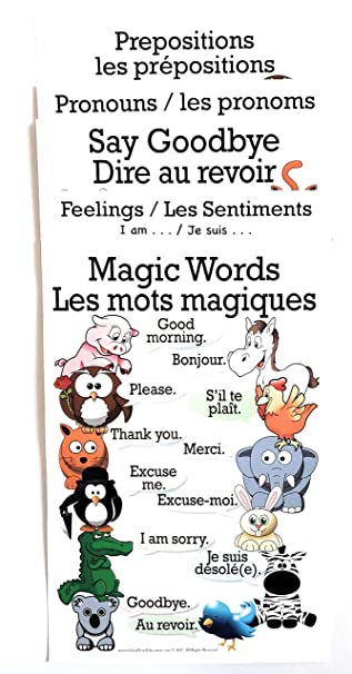 1 Set of 5 French/English Posters, Magic Words,Feelings,Say