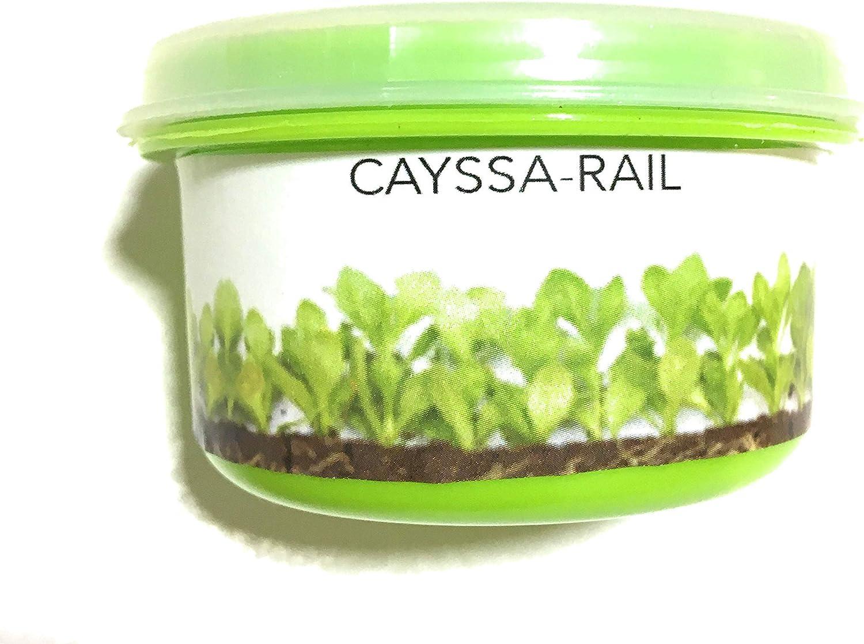 CAYSSA-RAIL Hormonas Enraizantes en Polvo (25g) Multiplica las raíces y evita su pudrición. Para esquejes, leñosas incluido patrón GF677.