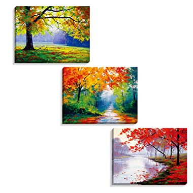 Nuolan Art -canvas Prints, 3 panel Wall Art oil Paintings Printed Pictures Stretched for Home Decoration -P3L3040-005