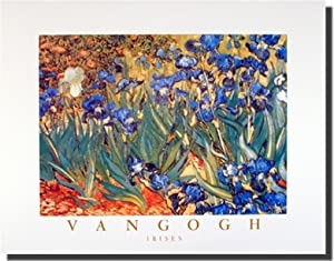 Wall Decor Poster Irises Flower Garden (Floral) Vincent Van Gogh Fine Art Print Picture (16x20)