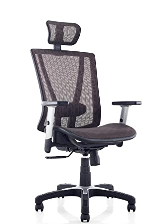 Ergomax Fully Meshed Ergo Office Chair With Headrest (Brown)