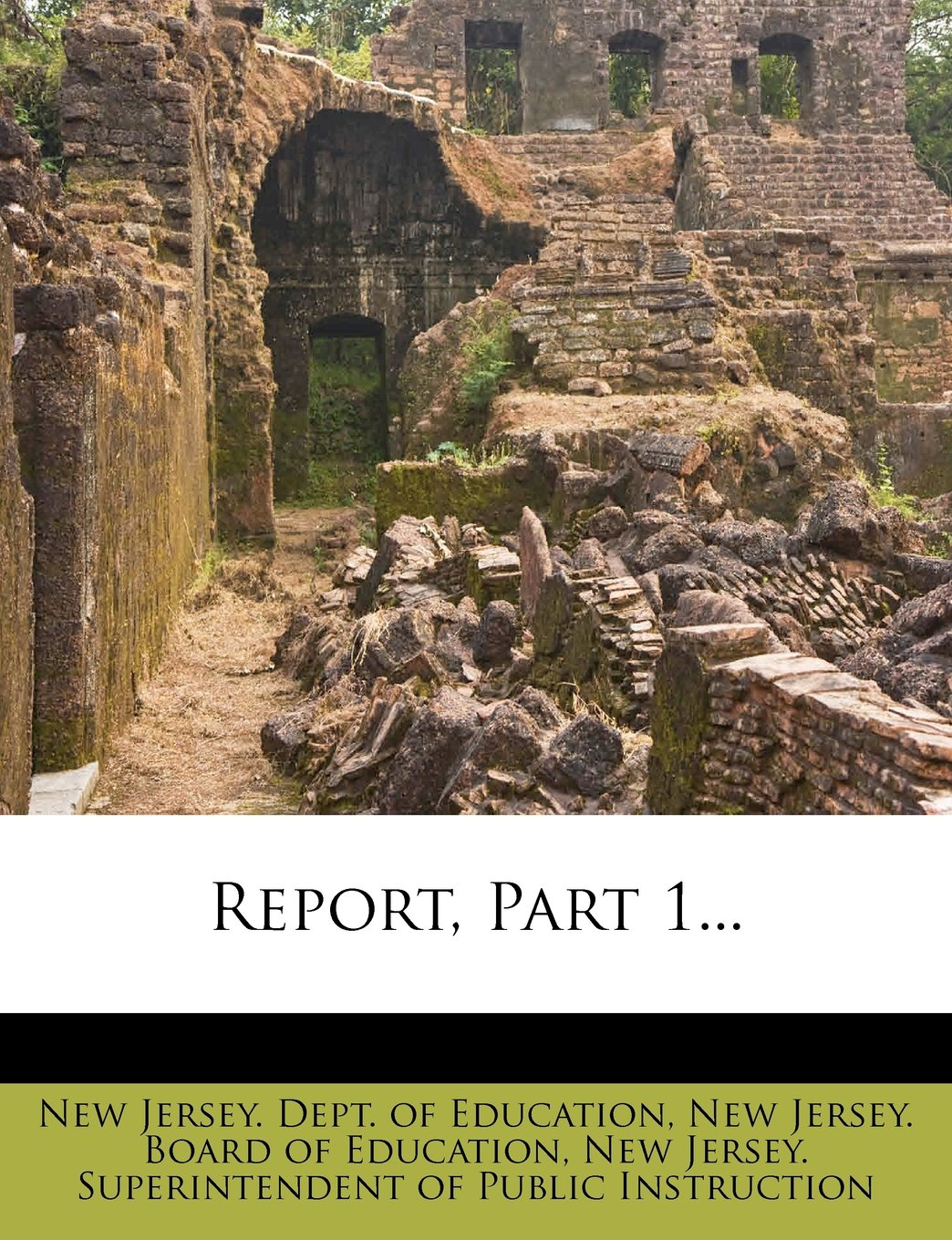 Download Report, Part 1... PDF