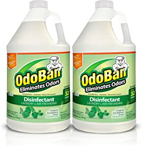 OdoBan Concentrate Disinfectant Laundry and Air Freshener, Eucalyptus Scent, 2 Gallons