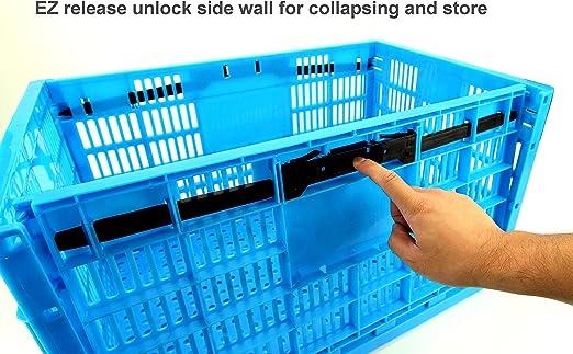 Garen  product image 2