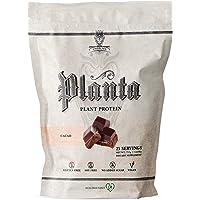 Ambrosia Planta - Premium Organic Plant-Based Protein | Vegan & Keto Friendly | Gourmet Flavors with No Bloating or…