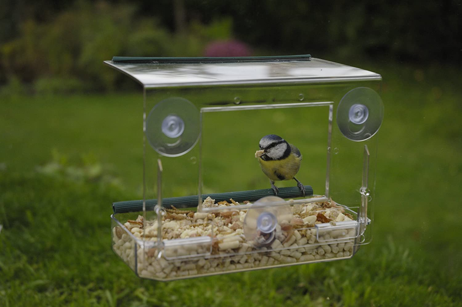 RSPB Window Bird Feeder