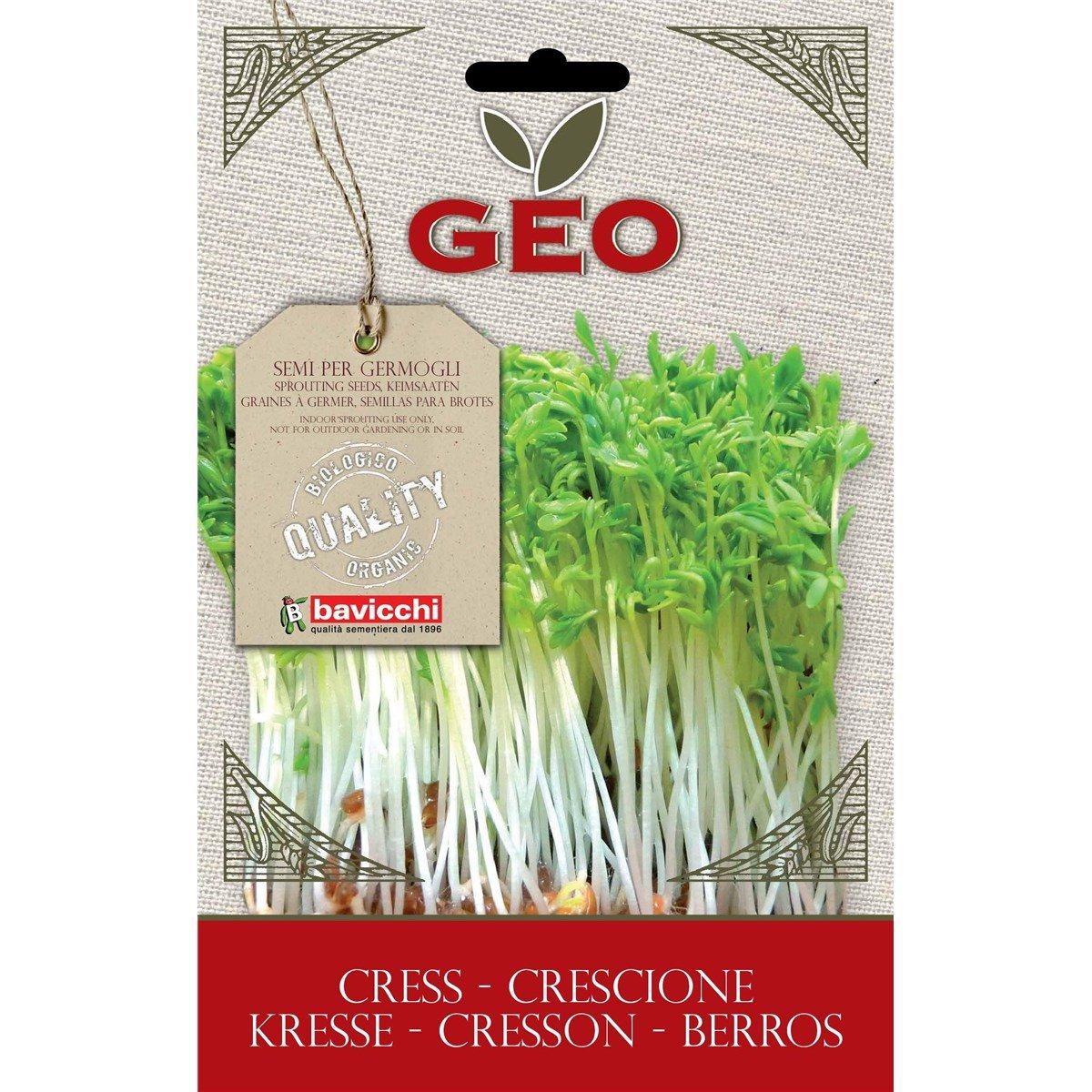 Geo Berros Semillas para germinar, Marrón, 12.7x0.7x20 cm: Amazon ...