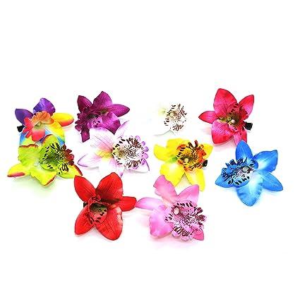 Amazon ids 10 pcs hawaiian orchid flower hair clips silk orchid ids 10 pcs hawaiian orchid flower hair clips silk orchid flower hair clips mightylinksfo