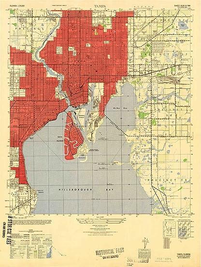 Topo Map Florida.Amazon Com Yellowmaps Tampa Fl Topo Map 1 25000 Scale 7 5 X 7 5