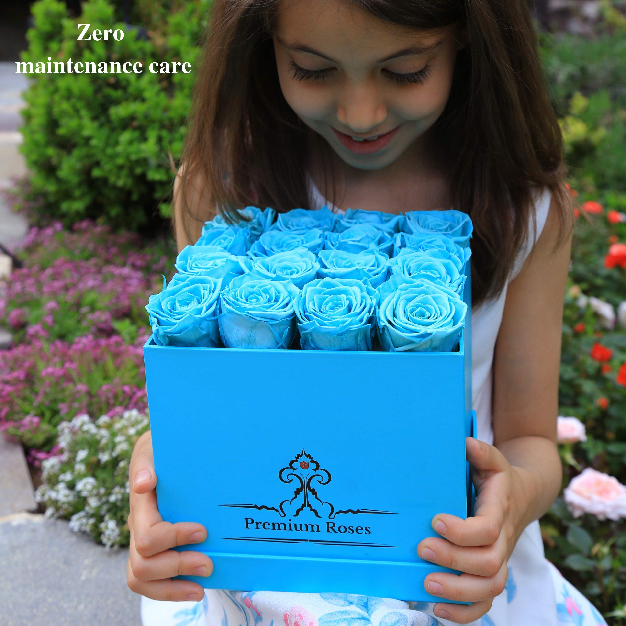 Premium Roses | Model Turquoise| Real Roses That Last 365 Days | Roses in a Box| Fresh Flowers (Blue Box, Medium) by Premium Roses (Image #4)