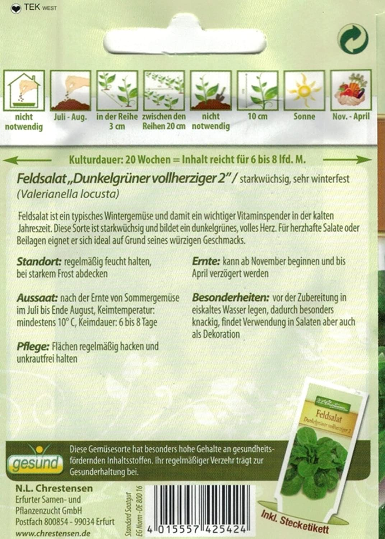 Chrestensen Feldsalat Dunkelgr/üner vollherziger 2