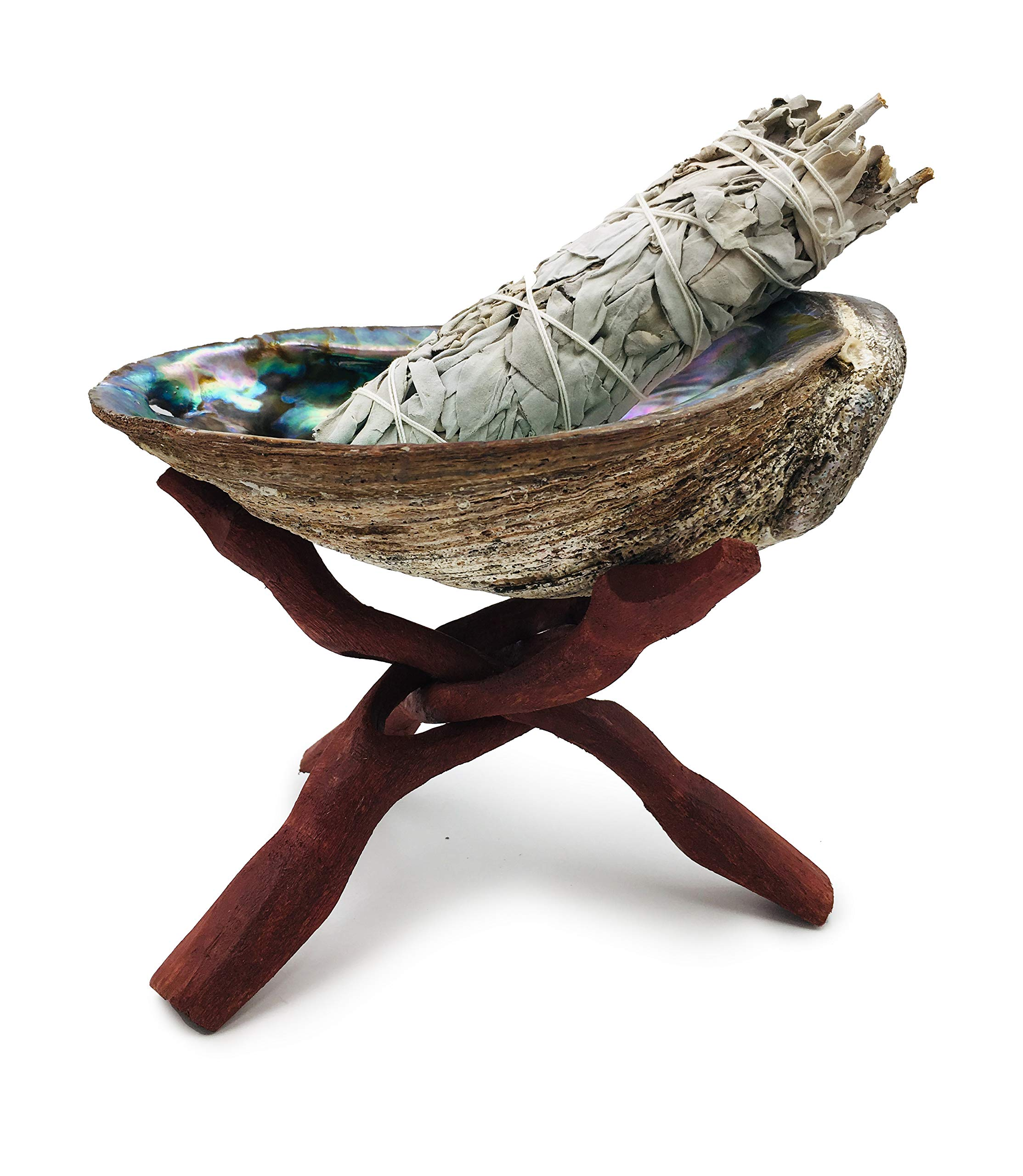 Alternative Imagination Premium, Extra Large 7 Inches (or More) Abalone Shell with Stained Wooden Tripod Stand and 1 California White Sage Smudge Sticks for Incense Burning, Home Fragrance by Alternative Imagination