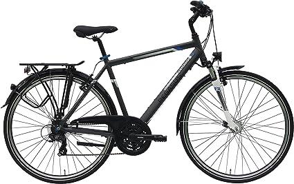Pegasus Piazza Trapez Bicicleta de trekking para hombre, 28 ...