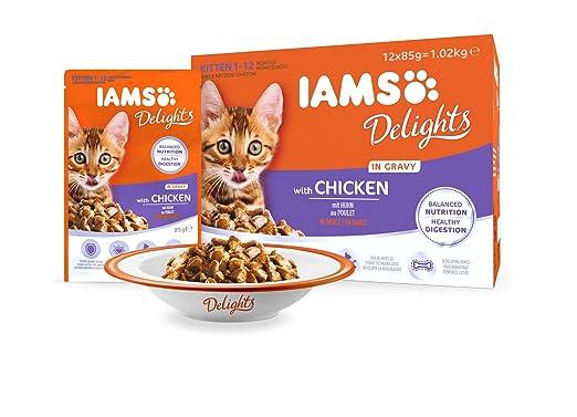 IAMS Delights Kitten & Junior with Chicken In Gravy Comida para Gatos - 1020 gr: Amazon.es: Productos para mascotas