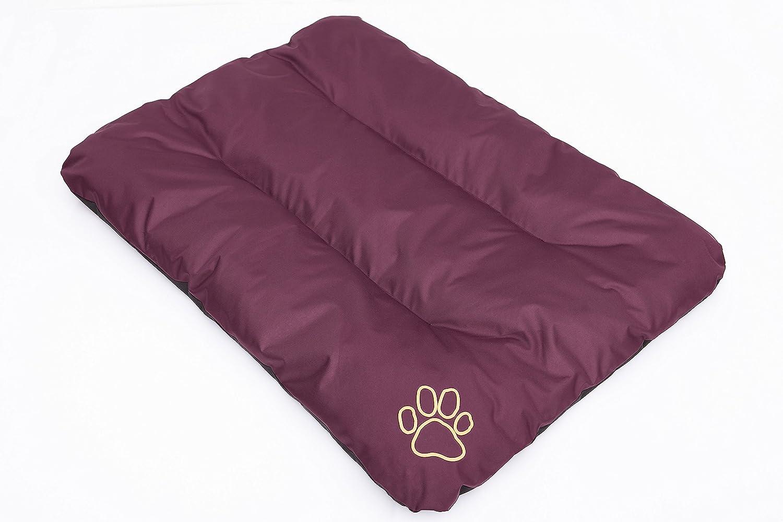 Borgogna Hobbydog R1/ecobor1/Cuccia Letto Cuscino Eco Riposo Sonno Spazio Spazio Cani Materasso 90/x 60/cm L