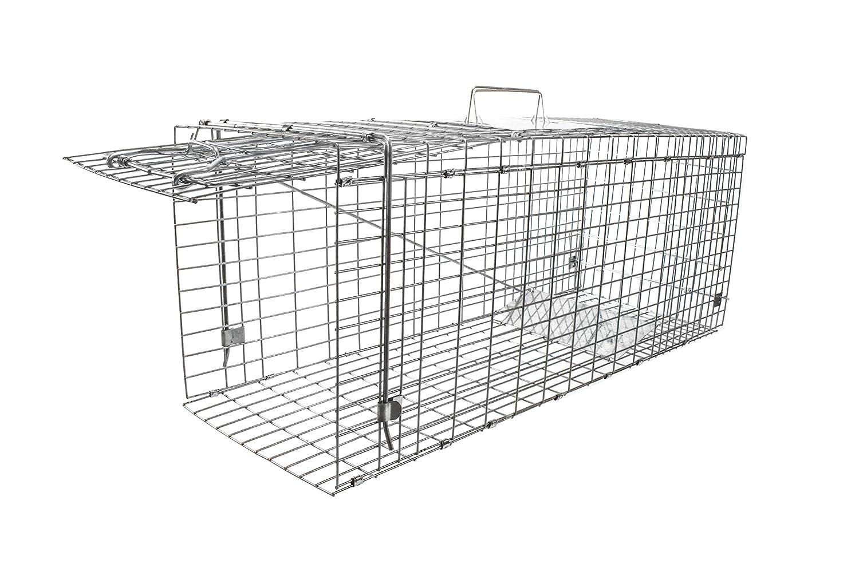 Plegable, galvanizado, tamaño mediano (80 cm) Live Catch humano Animal trampa cebo de pesca liberación con Segura y fácil acceso y liberación puerta: ...