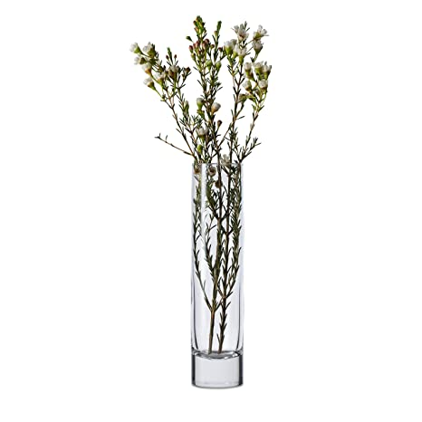 Amazon Libbey 7 12 Inch Cylinder Bud Vase Set Of 12 Tall