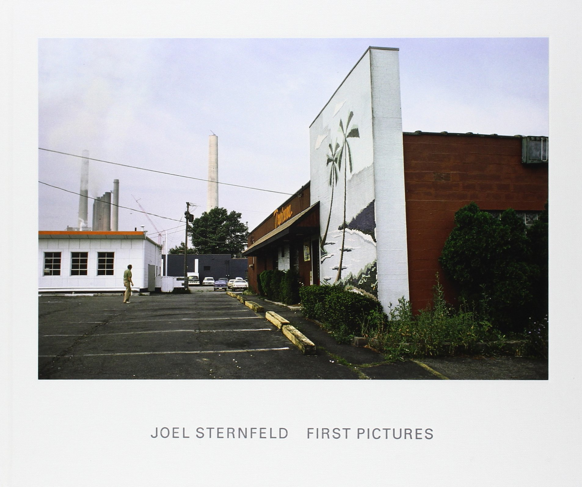 Joel Sternfeld: First Pictures ebook