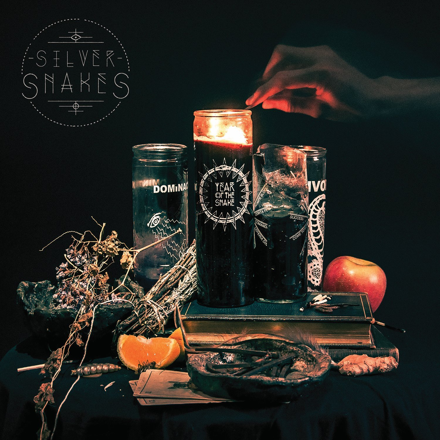 Vinilo : Silver Snakes - Year Of The Snake (LP Vinyl)