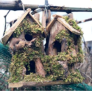 QTMY Preservative Wood Bird Houses for Outside Hanging Garden Decor,Birds Nest Box Cage Feeder