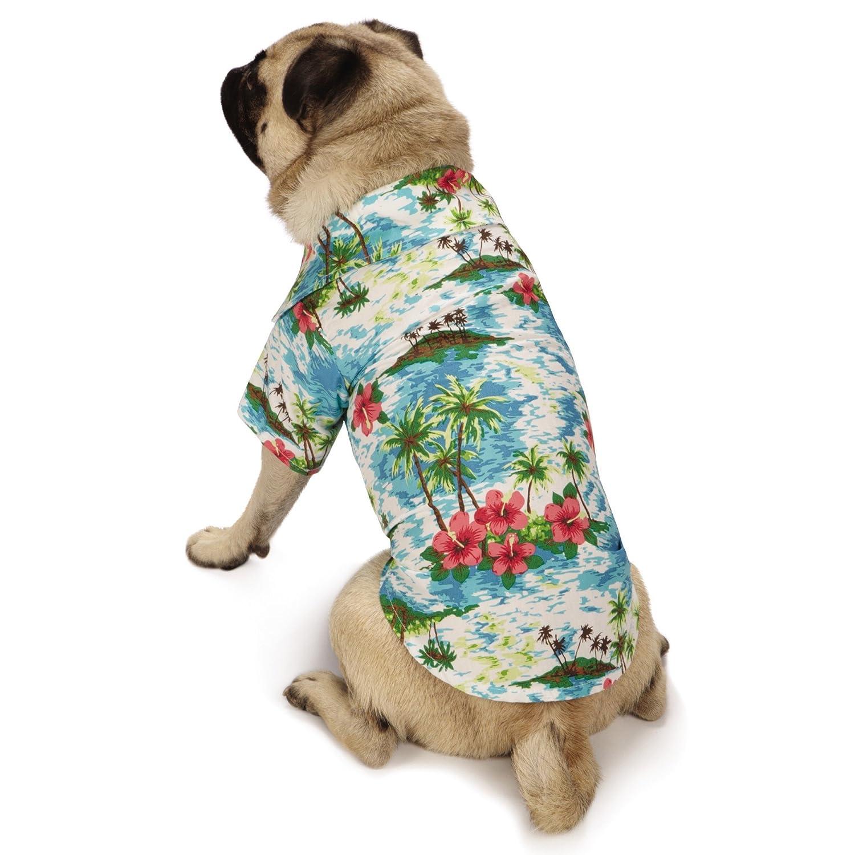 Casual Canine ZM8258 14 19 Hawaiian Breeze Camp Shirt, Small, Blue