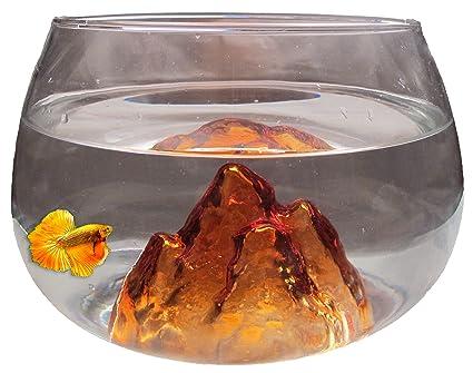 Nicepets - Pecera pequeña redonda de cristal morado y 6,5 litros para peces Betta y decoración: Amazon.es: Productos para mascotas