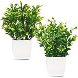 Whonline 2pcs Artificial Mini Potted Plants Fake Plastic Eucalyptus Leaves Plants for HomeOffice Desk Room Greenery Decorati