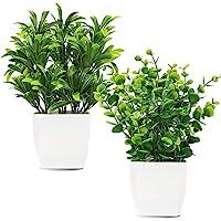 Whonline - 2 plantas artificiales en maceta de plástico falso, hojas de eucalipto para el hogar, oficina, oficina, sala…