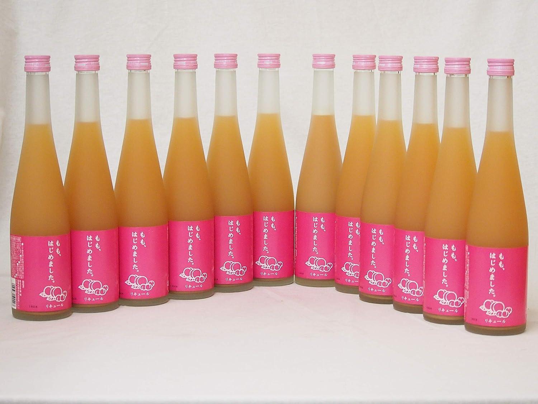 篠崎 桃梅酒もも、はじめました(福岡県)500ml×12本