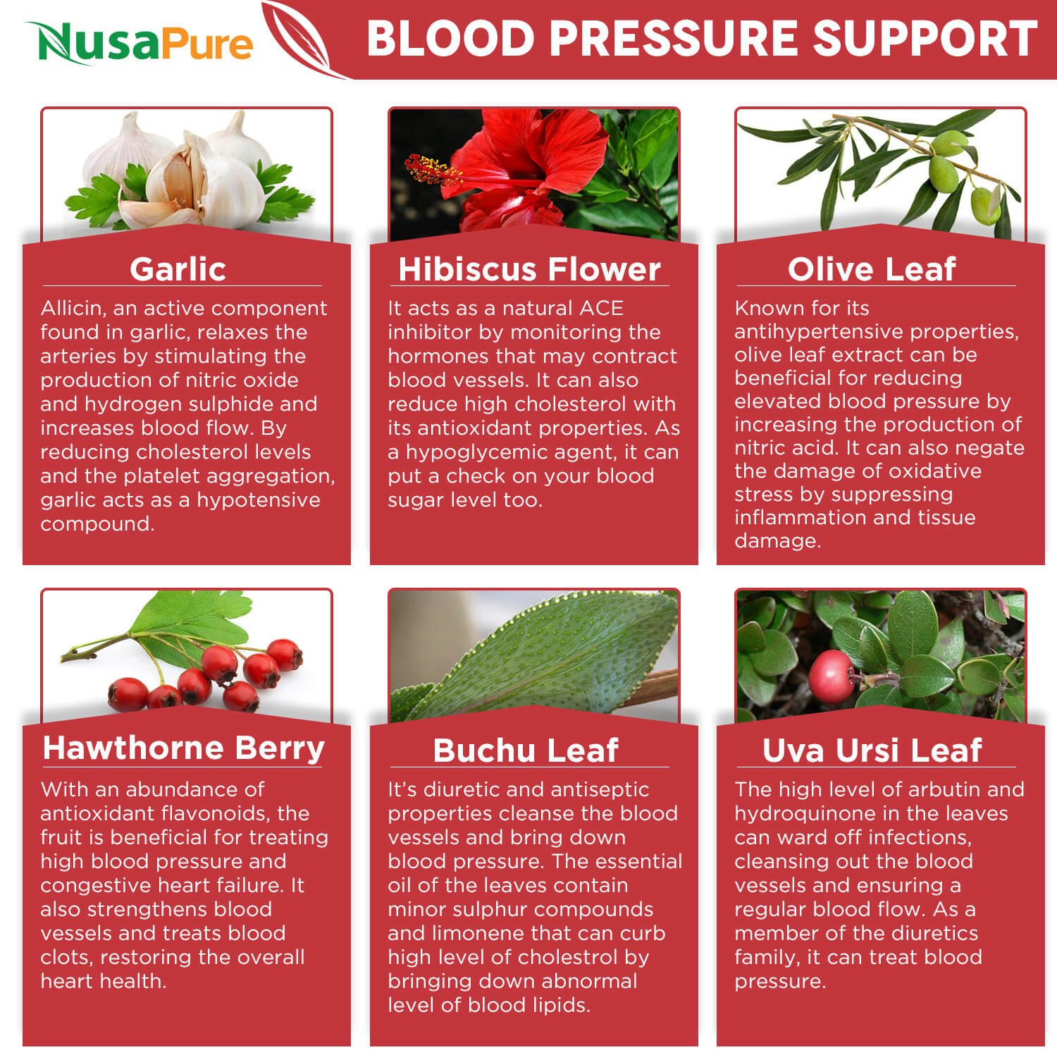 5 Ways You Can Lower High Blood Pressure