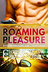 Roaming Pleasure: A Contemporary Romance Short Story in the Countermeasure Series