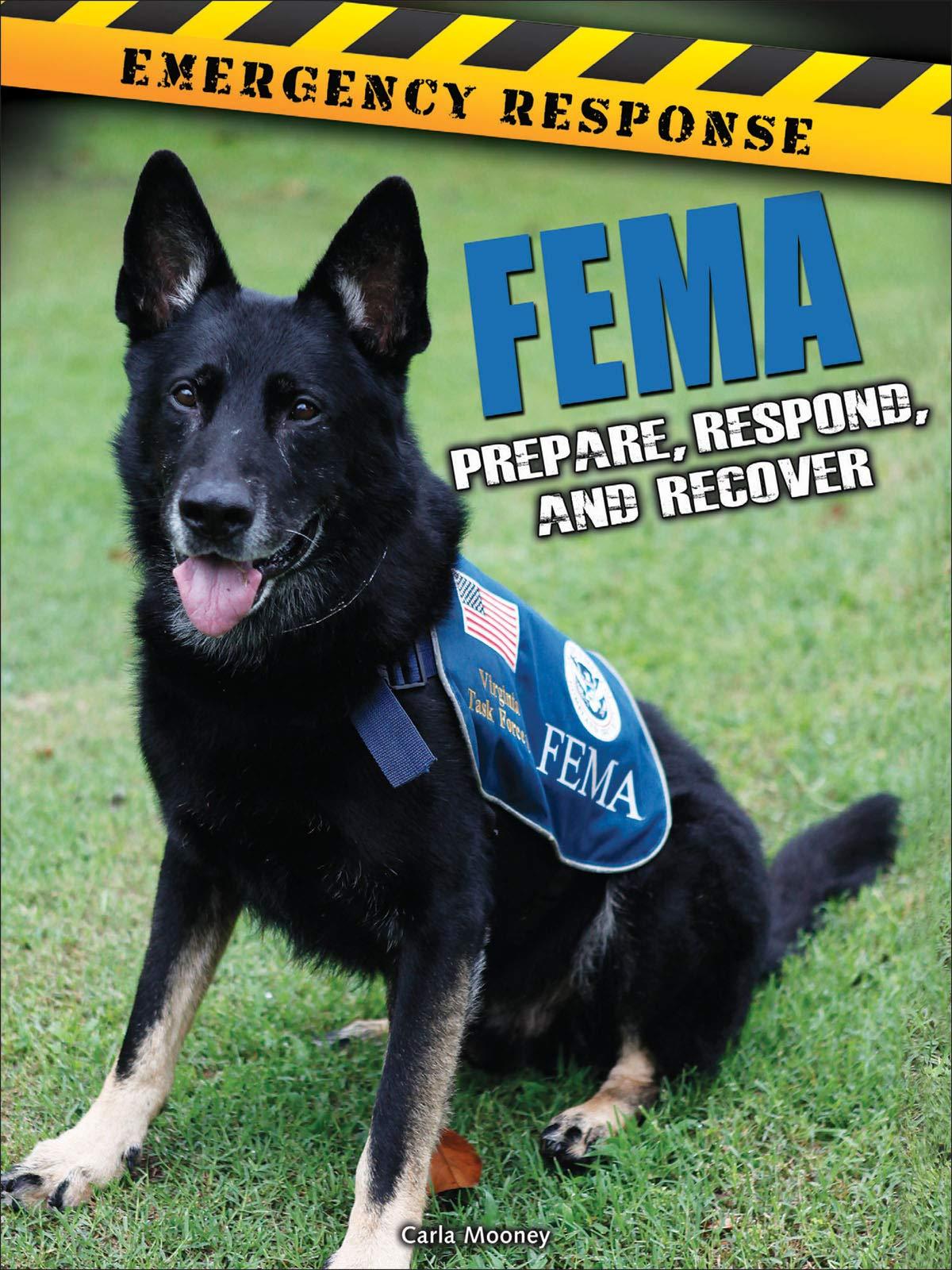 Download FEMA: Prepare, Respond, and Recover (Emergency Response) pdf epub