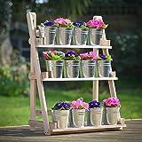 Plant Theatre Présentoir 3 étagères en bois naturel pour herbes aromatiques et plantes Cadeau idéal pour les jardiniers