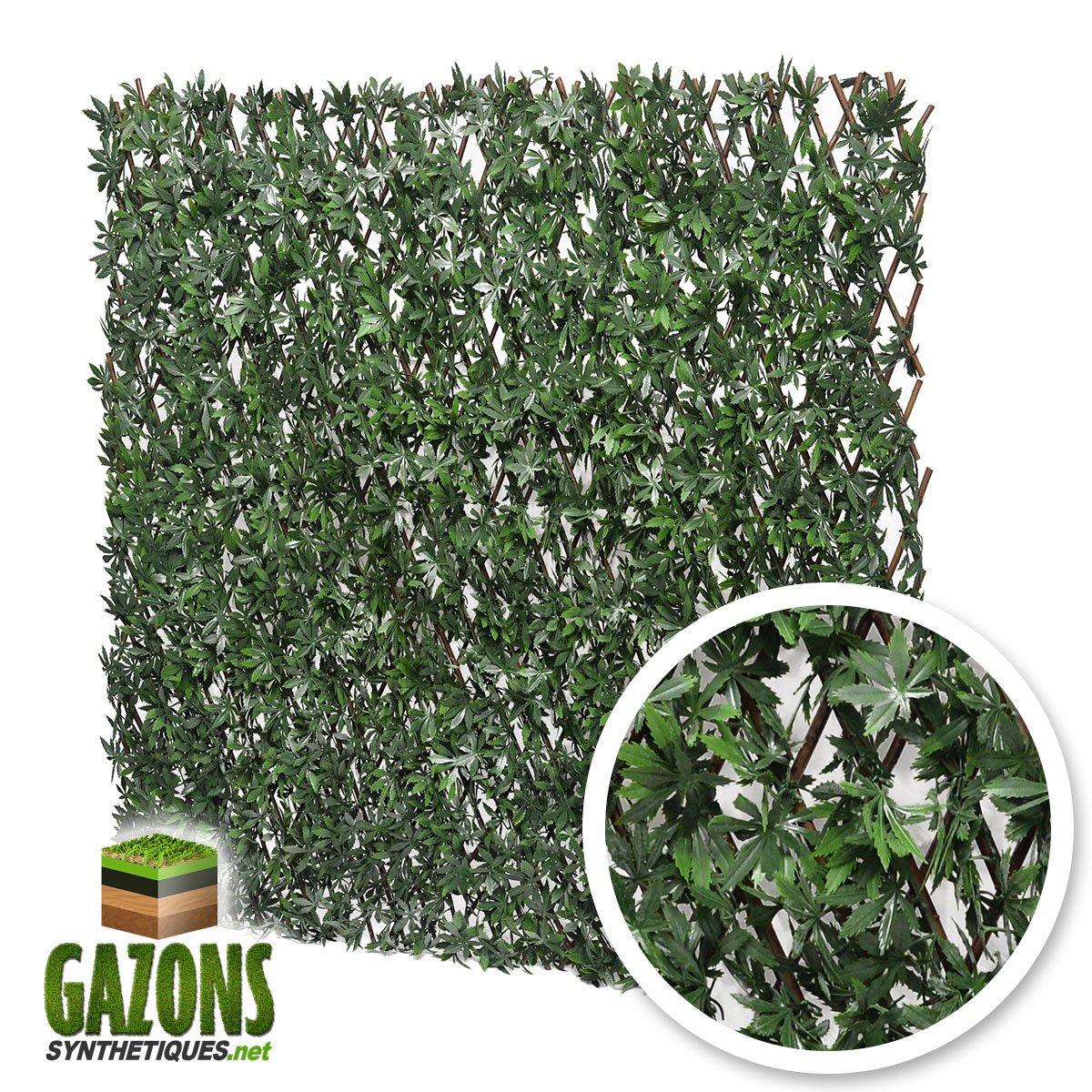 France Green Treillis Extensible Feuilles de Vigne Vierge Verte 1m x 2m