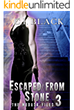 The Medusa Files, Case 3: Escaped From Stone