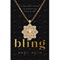 Bling: A Story About Ditching the Struggle and Living in Flow book cover